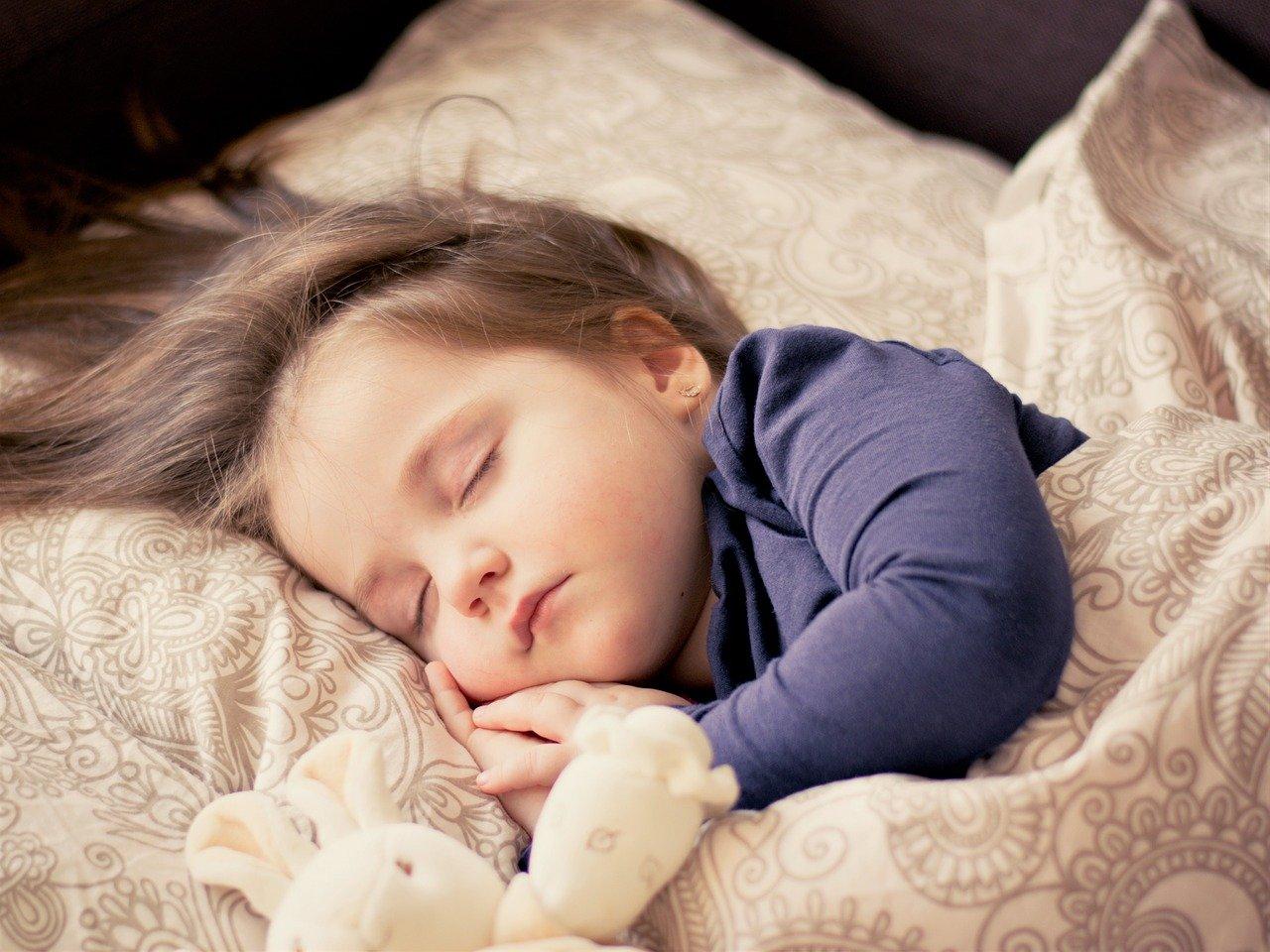 【実録・掃除好き必見】健康のために敷布団やめたら、2回の失敗を経て「最強のベッド」を見つけました